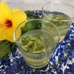 cocktail recipe for healthified herbal gin and tonic by the culinary cure