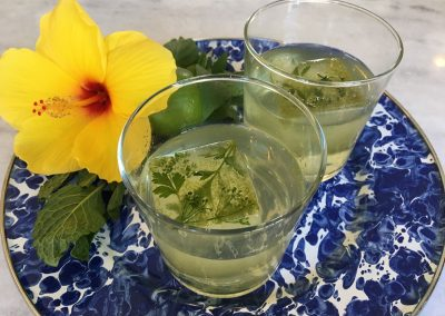 Basil Infused Gin & Tonic